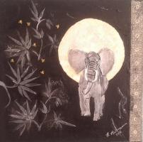 <h5>Titel: Afrika nat</h5><p>Malet på lærred 30x30</p>